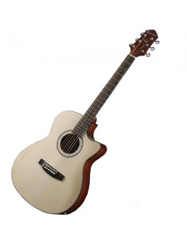 Crafter HT100CE N