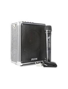 EGO AG0052 ST040 Portable Amplifier 40W