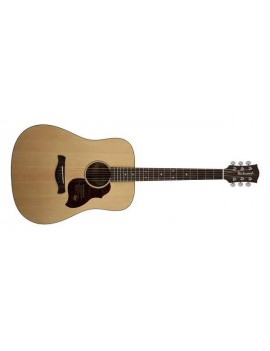 RICHWOOD D-20 Dreadnought