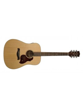 RICHWOOD D-20-E  Dreadnought