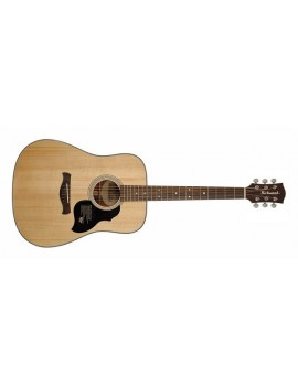 RICHWOOD D-40 Dreadnought