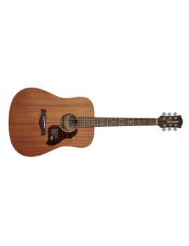 RICHWOOD D-50 Dreadnought