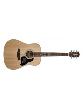 RICHWOOD D-60 Dreadnought