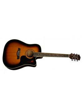 Richwood RD-12-CESB Dreadnought Sunburst (con preamplificatore)