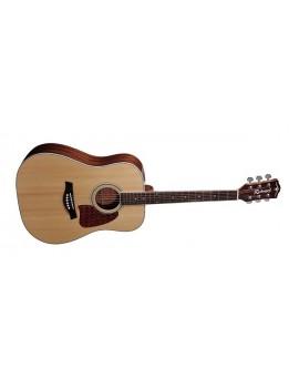Richwood RD-17 chitarra acustica dreadnought