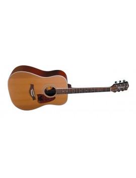 Richwood RD-17C chitarra acustica dreadnought (CEDRO MASSELLO)