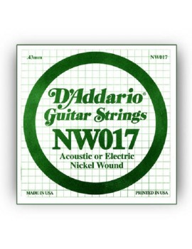 SINGL ACUST/ELET XL NCK RND WND