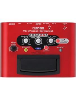 VE-2 Vocal Performer