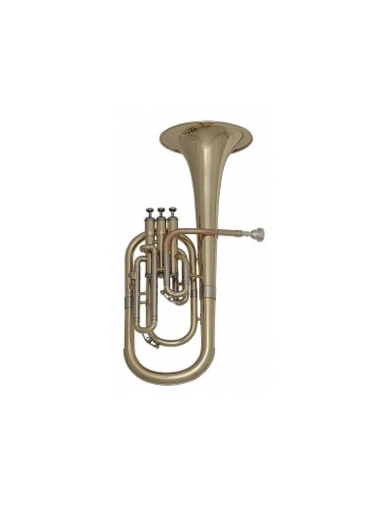 GEWApure Chitarra acustica VGS D-1 Violinburst